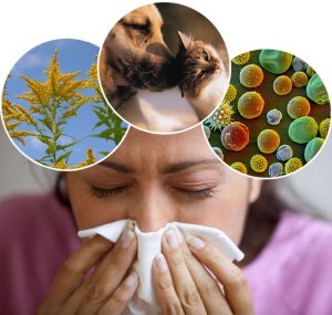 types-of-allergies